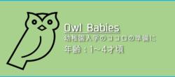 「Owl Babies」の遊び方